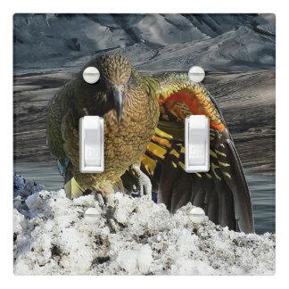 Cheeky new zealand kea mountain parrot light switch cover