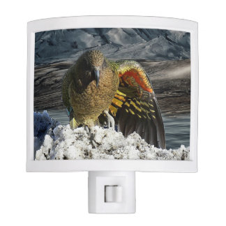 Cheeky new zealand kea mountain parrot night light