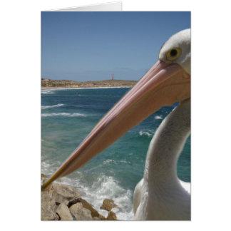 Cheeky_Pelican,_Small_Birthday_Greeting_Card. Card