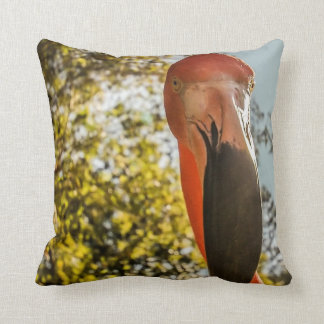 Cheeky Pretty in Pink Flamingo Throw Pillow