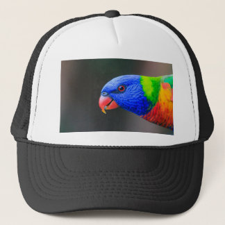 Cheeky-Rainbow-Lorikeet-silkenphotography Trucker Hat