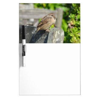Cheeky Sparrow Dry-Erase Whiteboard