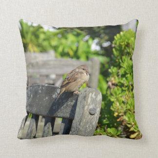 Cheeky Sparrow Pillow