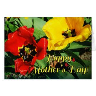 Cheerful Red Yellow Tulips Mother's Day Card
