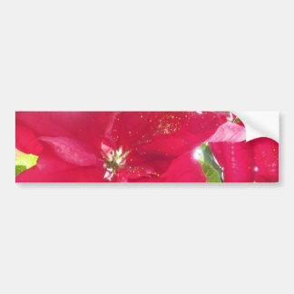Cheery Pointsetta with Gold Glitter Bumper Sticker