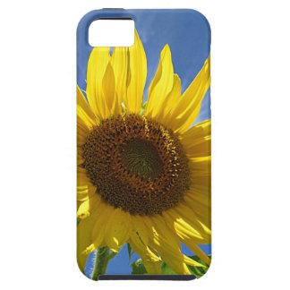 Cheery Sunflower iPhone 5 Cover