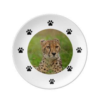 Cheeta Plate