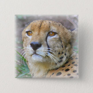 cheetah 2 inch square button