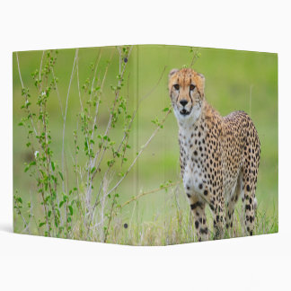 Cheetah 3 Ring Binder