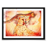 Cheetah 5x7 print photo print