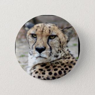 Cheetah-8934e-Bfram 2 Inch Round Button