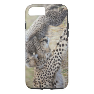 Cheetah (Acinonyx jubatus) mother playing with iPhone 7 Case