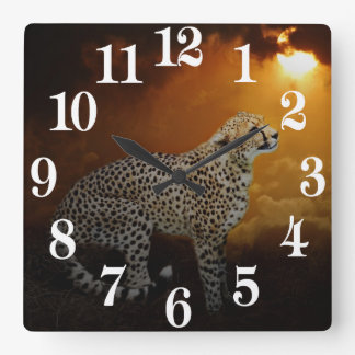 Cheetah beauty and sunset square wall clock