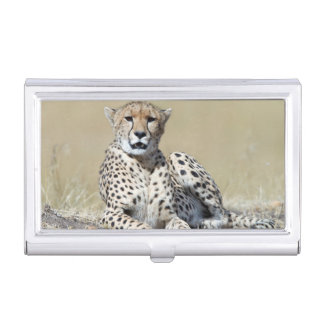 Cheetah Business Card Holder
