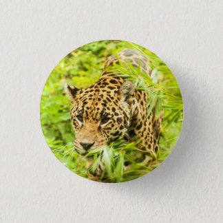 Cheetah - Button