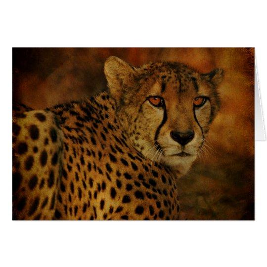 Cheetah card