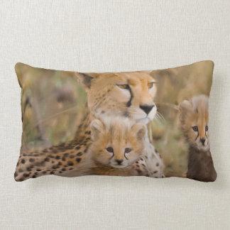 Cheetah Family Lumbar Pillow