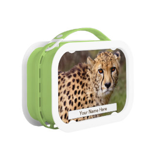 Cheetah Lunchbox (Enter Your Name)