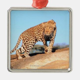 Cheetah Metal Ornament
