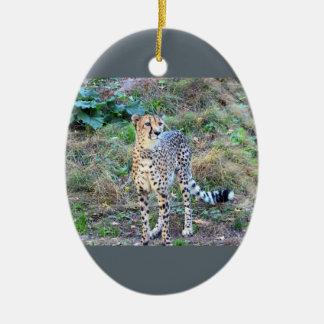 Cheetah Photo Ceramic Ornament