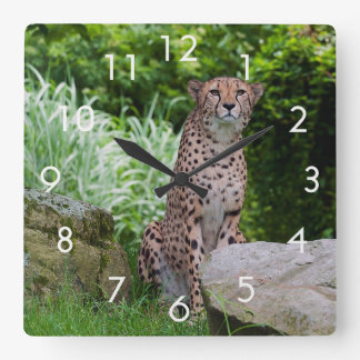 Cheetah Photo Wall Clock