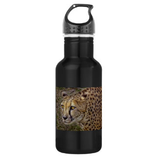Cheetah Profile 532 Ml Water Bottle