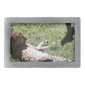 Cheetah Rectangular Belt Buckle
