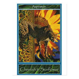Cheetah & Sunflower : Sustain Yourself Cards Postcard