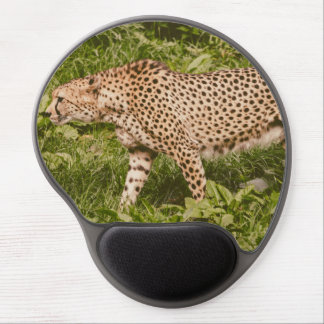 Cheetah Walking In A Field, Animal Photography Gel Mouse Pads