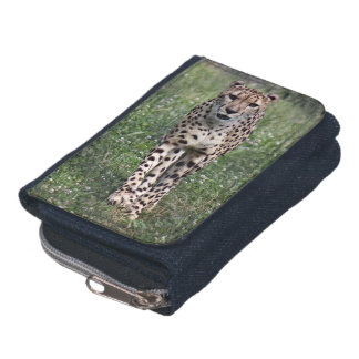 Cheetah Wallet