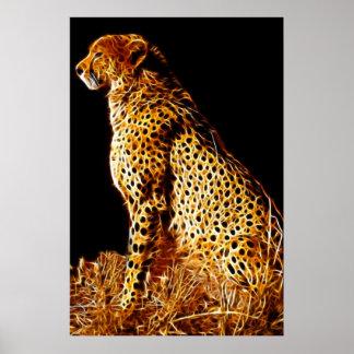 Cheetahs stance poster