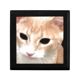 Cheeto Gift Box