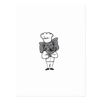 Chef Elephant Arms Crossed Standing Cartoon Postcard