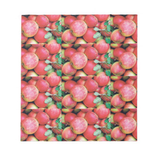 Chefs Salads cuisine fruits apples healthy foods Notepads