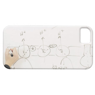 Chemistry on dry-erase board iPhone 5 covers