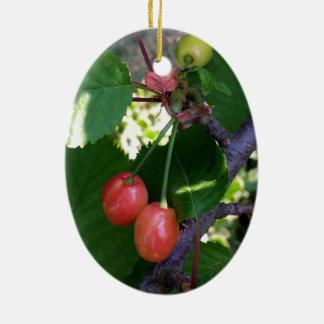 Cherries turning red ceramic ornament