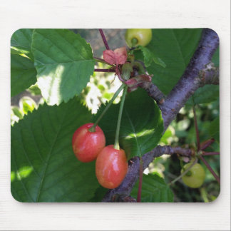 Cherries turning red mouse pad