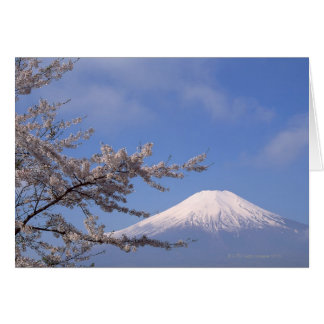 Cherry Blossom and Mt. Fuji 2 Card