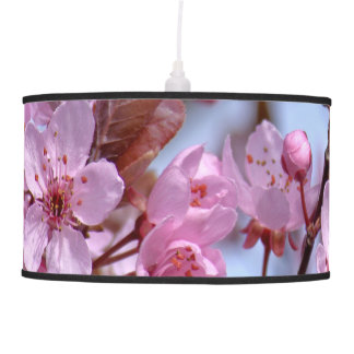 Cherry Blossom Asia Ceiling Lamps