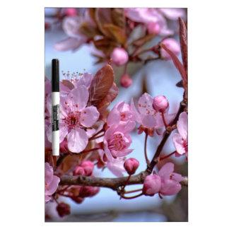 Cherry Blossom Asia Dry Erase White Board