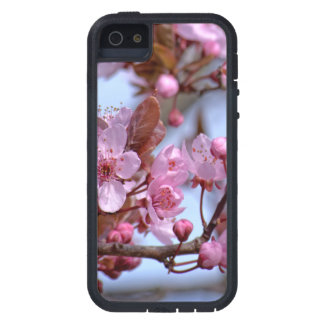Cherry Blossom Asia iPhone 5 Covers