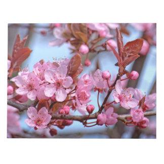Cherry Blossom Asia Notepads