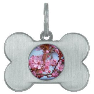 Cherry Blossom Asia Pet ID Tag