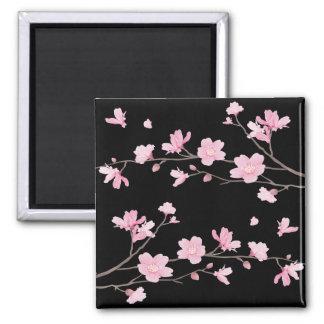 Cherry Blossom - Black Magnet