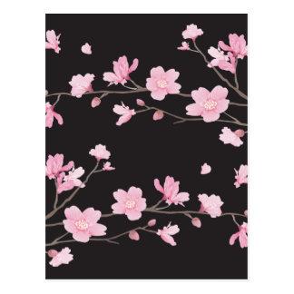 Cherry Blossom - Black Postcard
