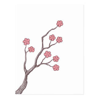 Cherry Blossom branch Postcard