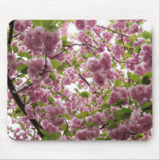 Cherry Blossom Canopy II Mouse Pad