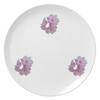 Cherry Blossom Cluster Party Plates