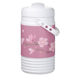 Cherry Blossom Cooler