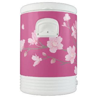 Cherry Blossom Drinks Cooler